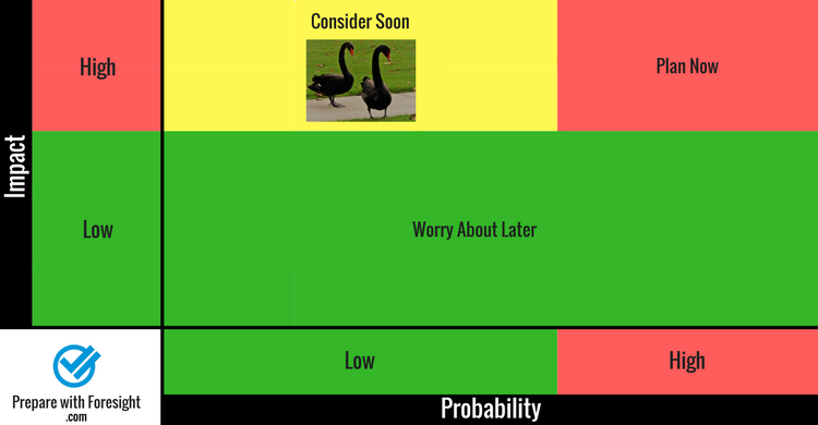 A risk matrix showing black swans