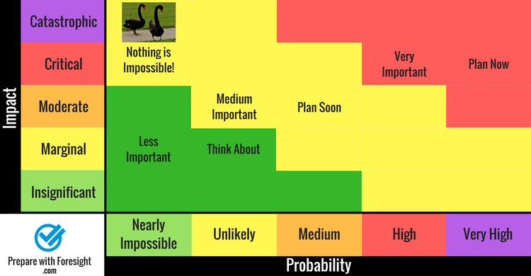 Risk matrix showing black swans.